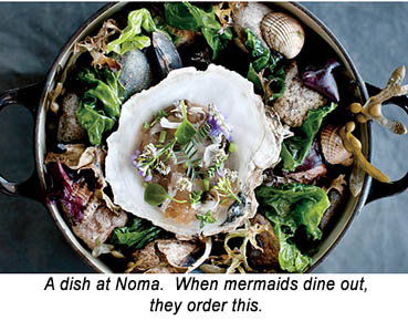 Noma Oyster